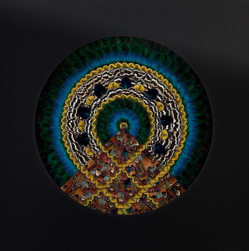GE Mandala 13